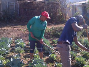 youth-for-christ-garden